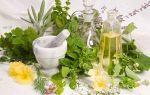 Рекомендованные и запрещенные травы для женского здоровья при мастопатии