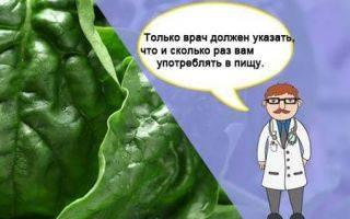 Диета при эндометриозе меню