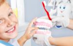 Стоматология: что лечит пародонтолог?