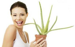 Как применять алоэ для лица? полезные свойства и самые эффективные рецепты
