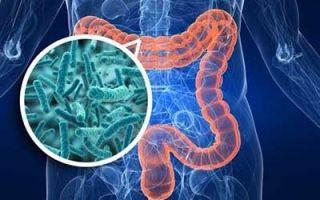 Температура при кишечной инфекции: какая бывает и как сбивать