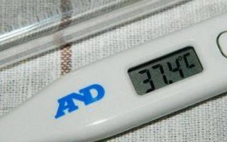 Почему у ребенка температура 37.2 без симптомов и держится долгое время: возможные причины и что делать, стоит ли беспокоиться