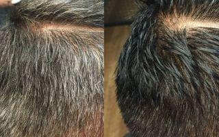 Оттеночный или тонирующий шампунь для седых волос для мужчин