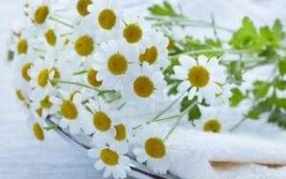 Что может спровоцировать желтоватые выделения и кислый запах из влагалища