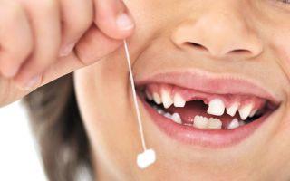 Зубы у детей 6 лет: все особенности