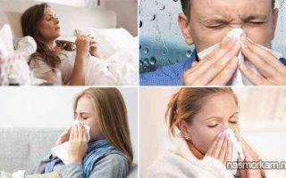 Мирамистин в нос при насморке у взрослых