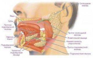 Причины и лечение кровяных пузырей во рту на щеке