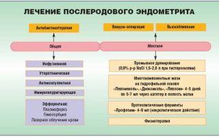 Послеродовый эндометрит: мкб