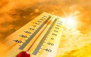 В чем разница между тепловым и солнечным ударом?