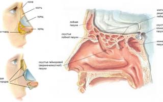 Кривой нос после перелома