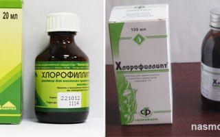 Как правильно делать в небулайзере ингаляции с Хлорофиллиптом?