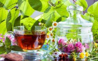 Отвар из семян льна: как правильно заваривать и пить
