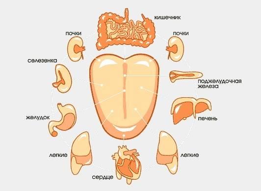 Неровные края языка (зубчатый язык)