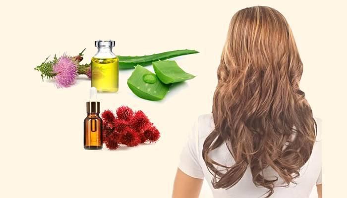 Аргановое масло для волос: полезные свойства и способы применения