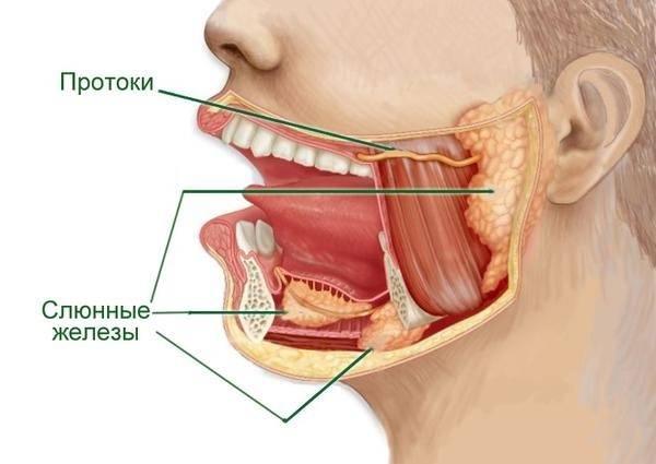 Пенистая, вязкая и тягучая слюна во рту – причины и лечение