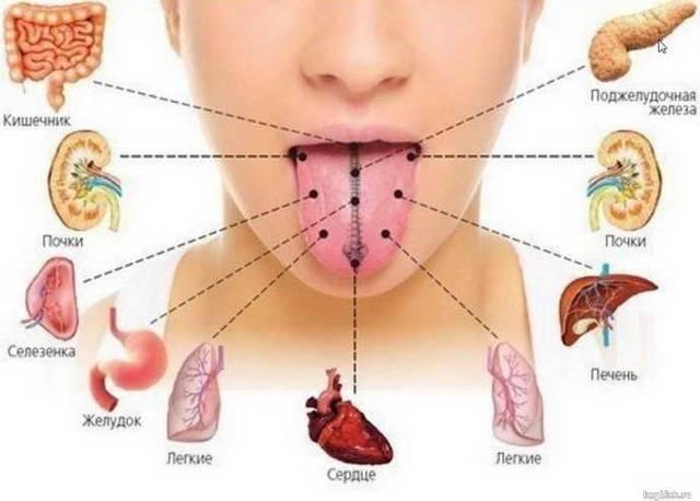 Чем лечить стоматит на губе и как быстро вылечить