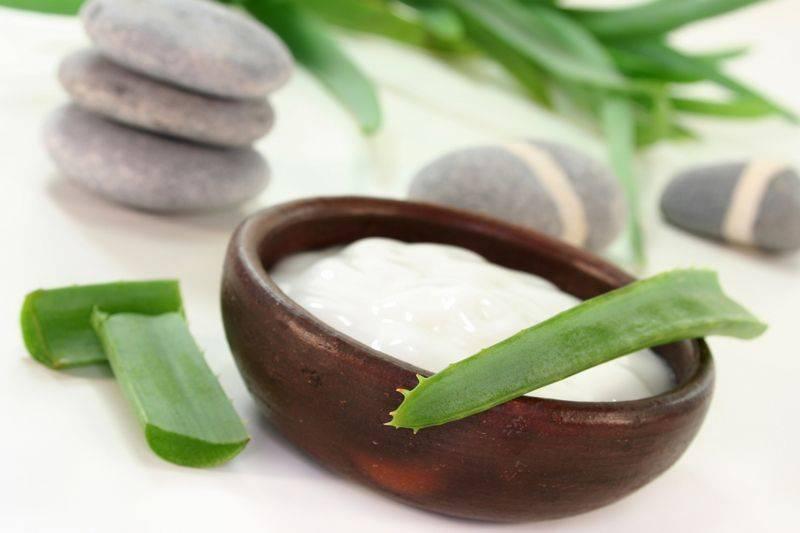 Польза алоэ для лица: рецепты приготовления средств для кожи в домашних условиях