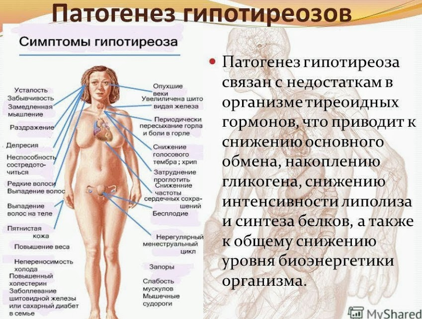 Лечение гормонального сбоя у женщин народными средствами