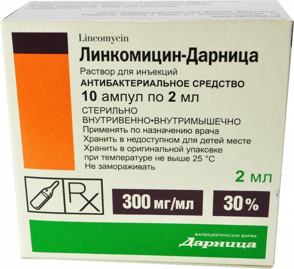 Линкомицин: инструкция по применению