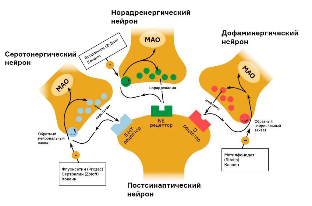 Биоревитализант бьютель, отличающийся от подобных препаратов высокой молекулярной массой