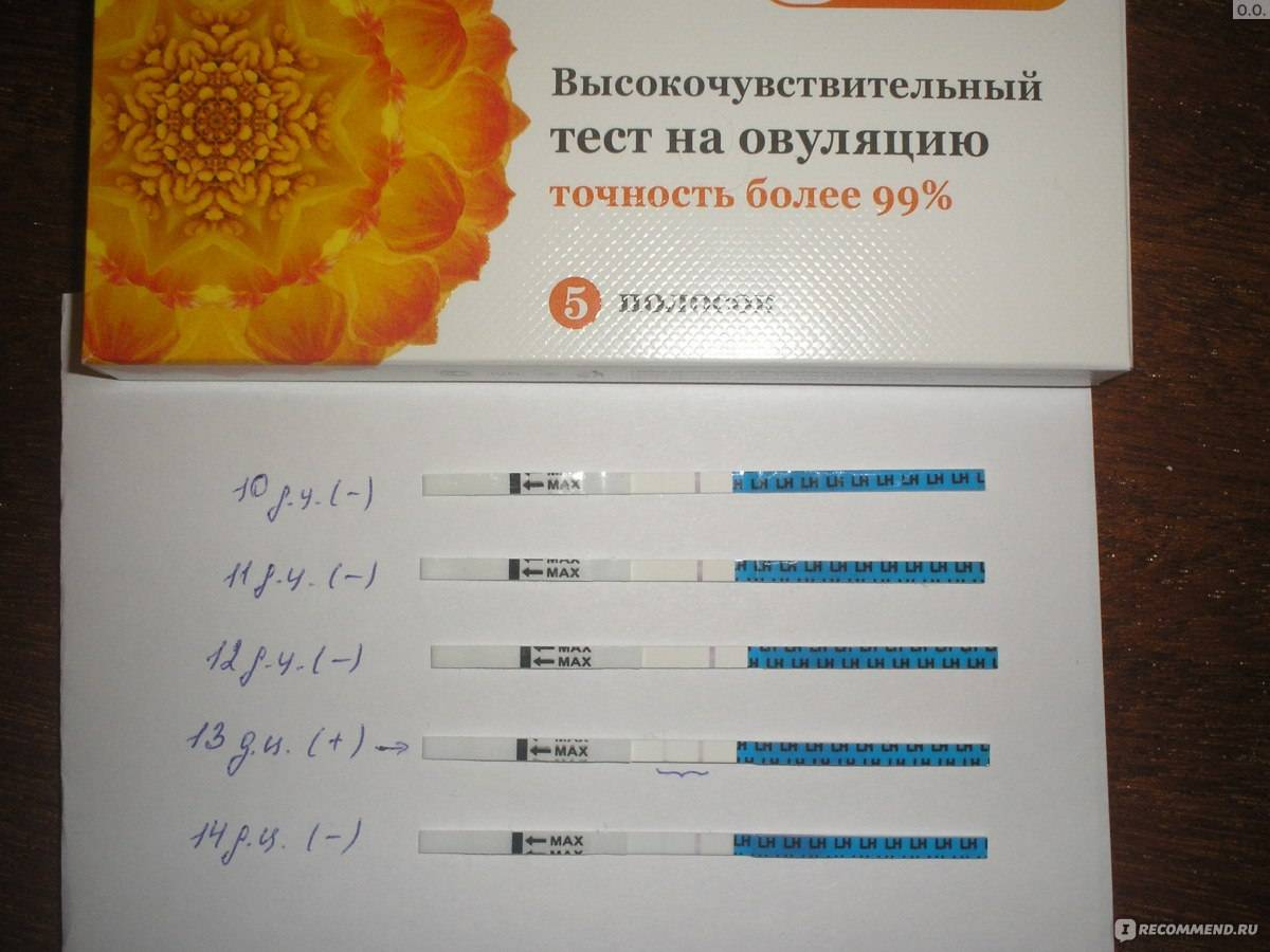 Тесты на овуляцию. рекомендации по использованию