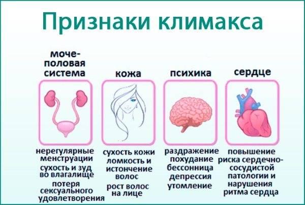 Лечение гормонального сбоя народными средствами