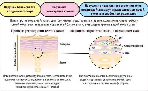 Климакс у женщин: симптомы и причины, продолжительность, лечение