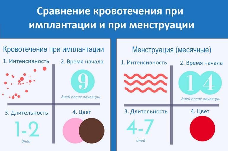 Как определить кровотечение или месячные:  подробная информация, отличия и характерные признаки