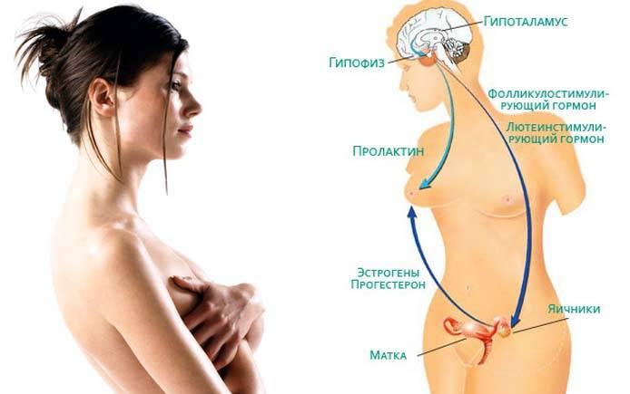 Повышенный пролактин: причины, последствия и лечение