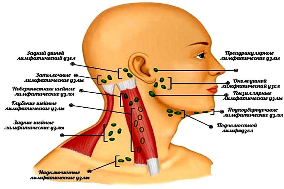 Боль под ухом за челюстью при надавливании