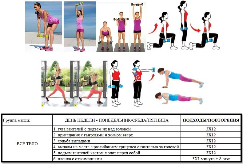 Упражнения на спину в тренажерном зале — 13 лучших на массу и рельеф