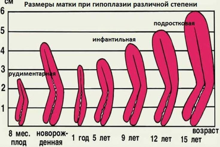 Влагалищное исследование - осмотр гинеколога