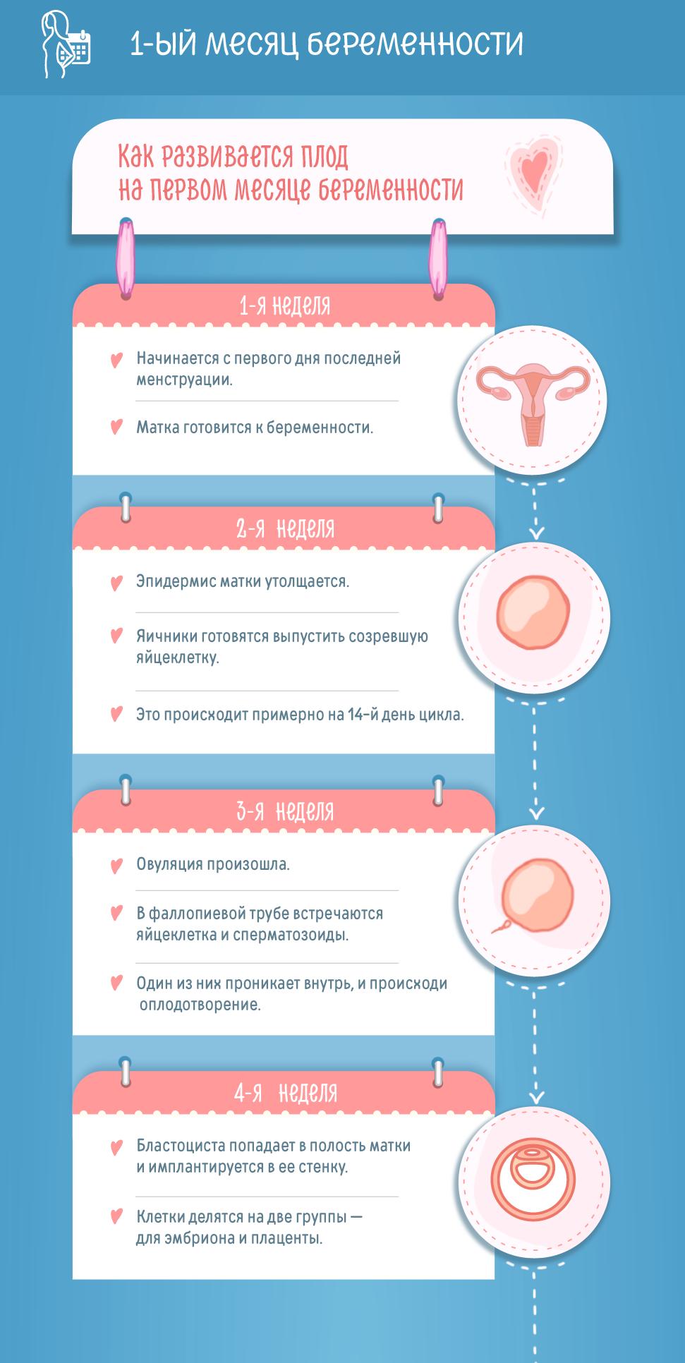 Какими бывают выделения после овуляции, если зачатие произошло?