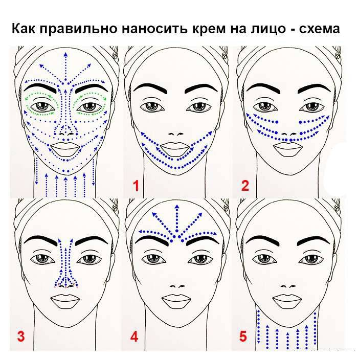 Схема, как наносить крем для глаз: избавляемся от морщин, синяков и отеков