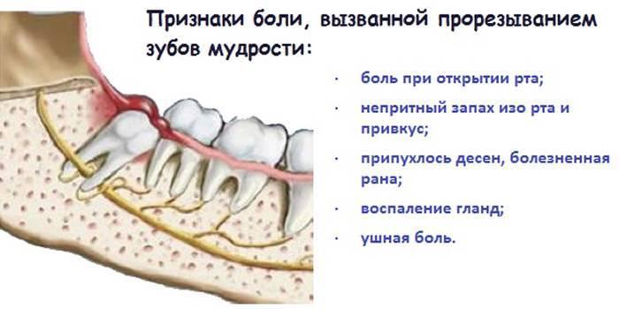 Куда может отдавать зубная боль: под напряжением голова, виски и уши