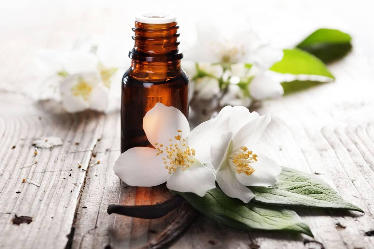 Эфирное масло пачули — свойства и применение
