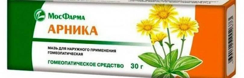 Арника: польза и лечебное применение