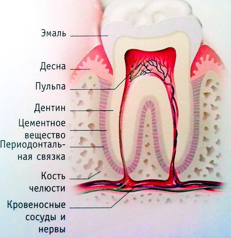 Причины боли в верхней челюсти слева и справа