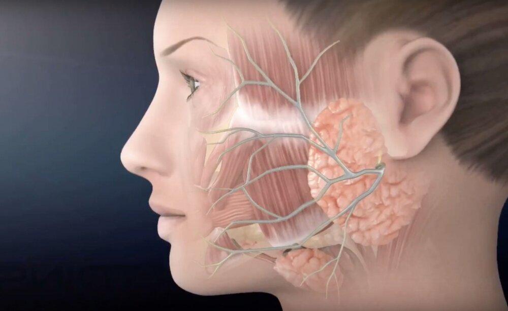 Невралгия тройничного нерва                (неврит тройничного нерва, болевой тик, болезненный тик, тригеминальная невралгия, болезнь фозерджилла)