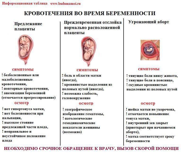 Стоматит при беременности, опасность осложнений, способы лечения