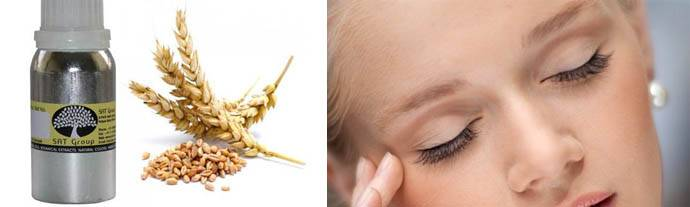 Масло зародышей пшеницы: полезные свойства и применение