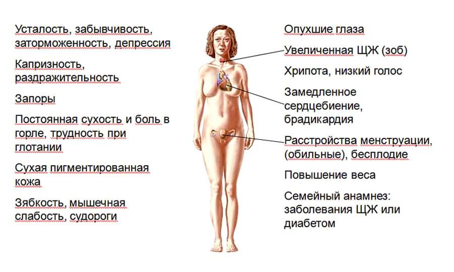 Низкий пролактин у женщин: причины, симптомы, лечение и профилактика