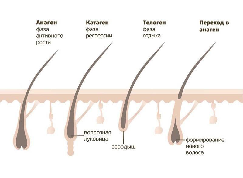 Длина волос для шугаринга: какая минимальная должна быть для их идеального удаления