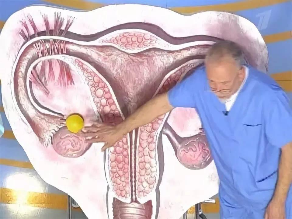 Жидкость за маткой симптомы и лечения