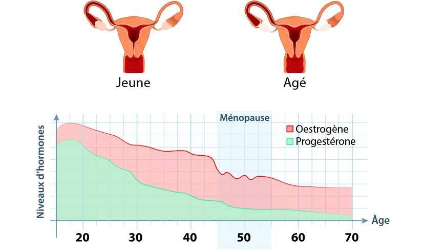 Пременопауза: симптомы, возраст, лечение