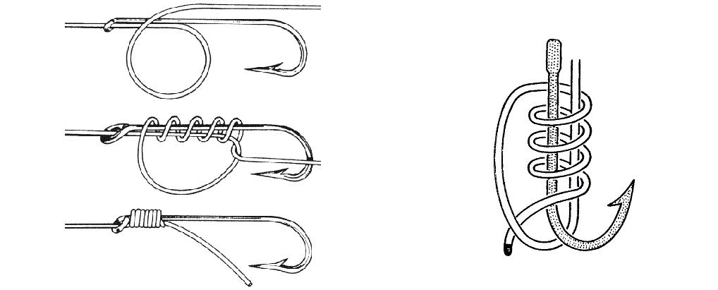 Рыболовный узел паломар