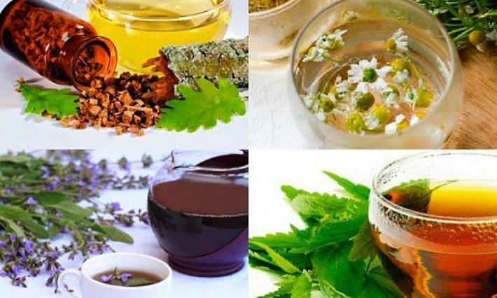 10 лекарственных трав для лечения пародонтоза