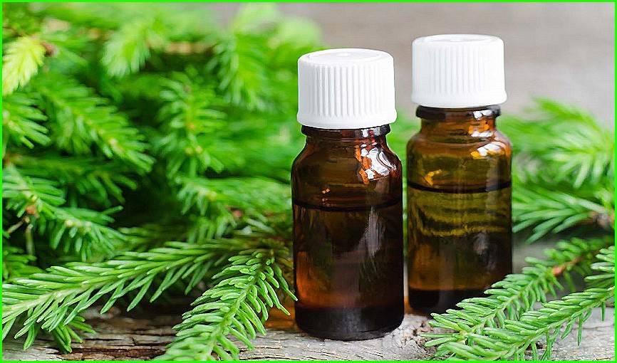 Применение масла пихты для лечения волос