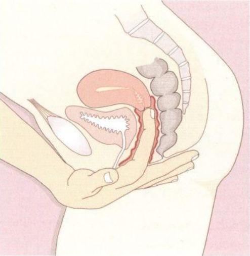 Методы проведения гинекологического осмотра женщины