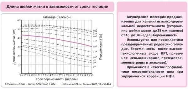 Длина шейки матки при беременности